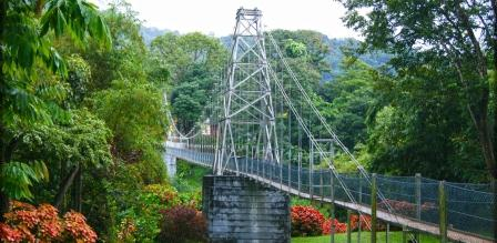 Peradeniya Garden Bridge