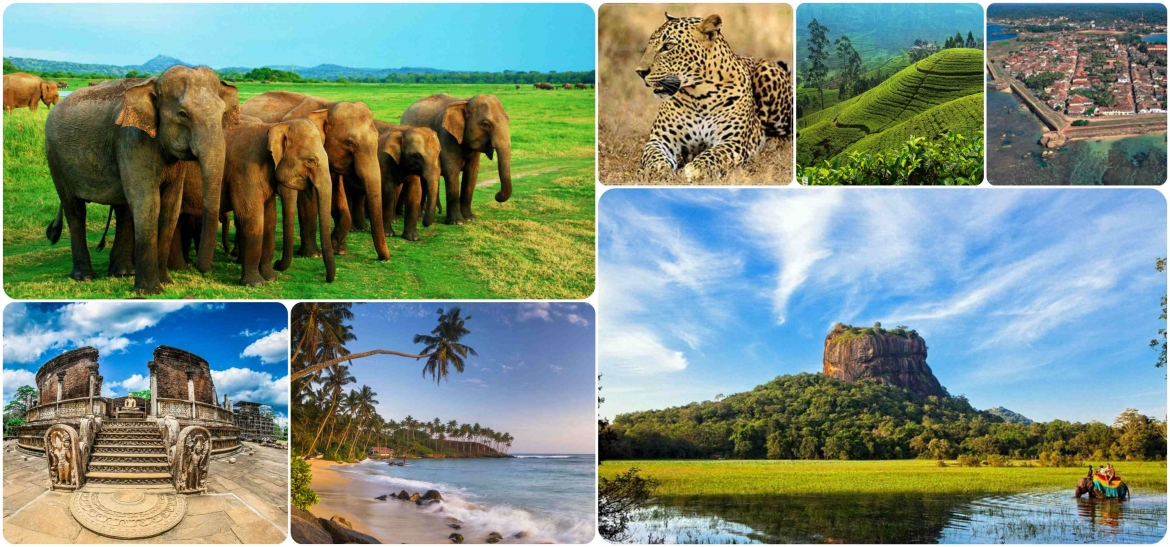 Wildlife with Cultural Experience Tour